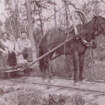 В годы Великой Отечественной войны конная тяга применялась на лесовозной узкоколейной железной дороге в Коуровском леспромхозе на Урале. Фото 1941 года. Источник: http://infojd.ru/15/kourovka.html